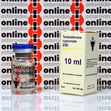 Testosterone cypionate 250 mg Moldavian Pharma