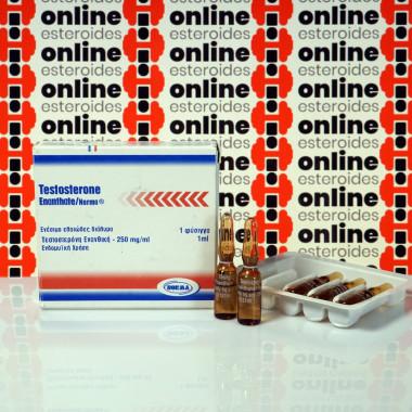 Testosterone Enanthate 250 mg Norma Hellas
